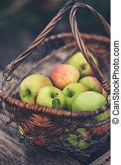 kosz, organiczny, jabłka
