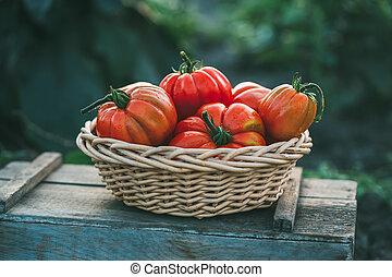 kosz, pomidory, dojrzały, czerwony