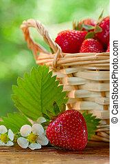 kosz, stół, truskawki, ogród