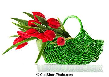 kosz, tulipany, czerwony