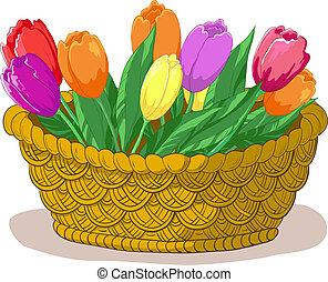 kosz, tulipany, kwiaty