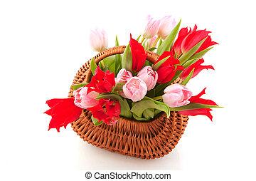 kosz, tulipany, trzcina, nikczemny