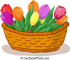 kosz, tulipany