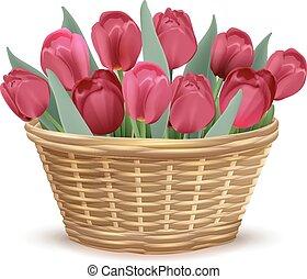 kosz, wiklina, pełny, czerwony, tulipany