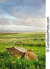 kosz, wysoka trawa, piknik, kapelusz