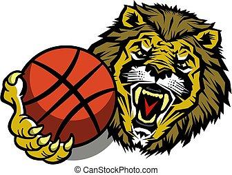 koszykówka, lwy