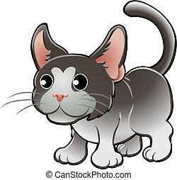 kot, ilustracja, sprytny, wektor, krajowy