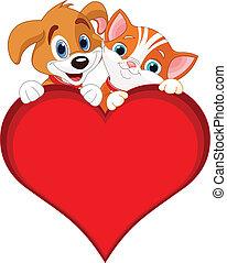 kot, valentine, znak, pies
