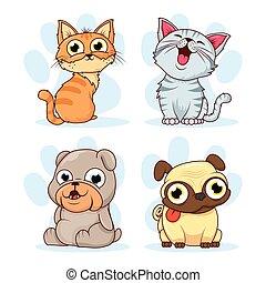 koty, pieszczochy, psy, grupa, litery
