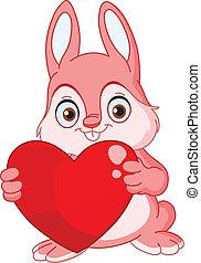 królik, zima, valentine