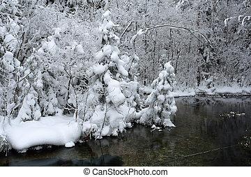 krajobraz, mroźny, dzień, zima