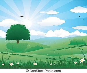 krajobraz, natura