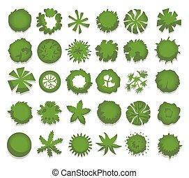 krajobraz, wektor, projektować, prospekt, odizolowany, drzewa, górny, komplet, różny, krzaki, hedges., projects., ilustracja, zielony, white.