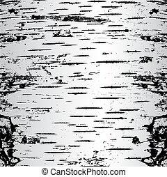 krakelura, illustration., wektor, brzoza, kora, texture.