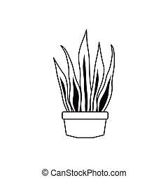 kreska, rośliny, ikona, styl, doniczkowy, sansevieria