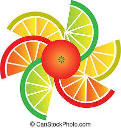 kromki, pomarańcza, cytryna, grejpfrut, wapno