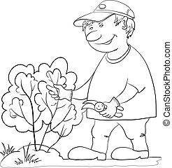 krzak, kontur, ogrodnik, skaleczenia