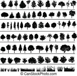 krzaki, drzewa, trawa