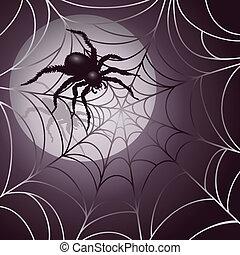 księżycowy, sieć pająka