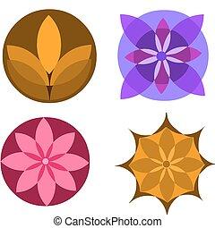 kwiat, barwny, ikony, abstrakcyjny, ilustracja, wektor, biały