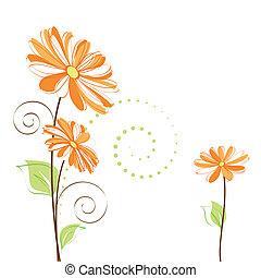 kwiat, barwny, wiosna, tło, stokrotka, biały