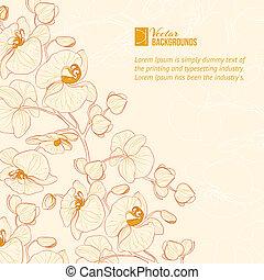 kwiat, label., storczyk