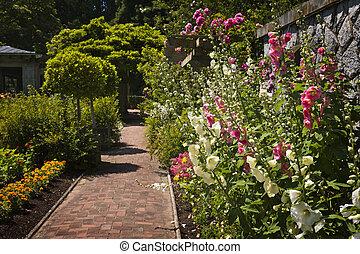 kwiat ogród, barwny