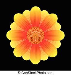 kwiat, słonecznik, abstrakcyjny