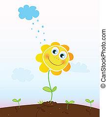 kwiat, szczęśliwy