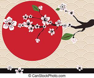kwiat, wiśnia, japończyk, karta