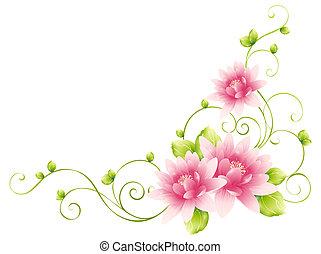 kwiat, winorośle