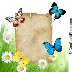 kwiatowy, motyle, papier, tło, czysty
