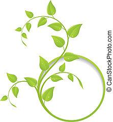 kwiatowy, ułożyć, zielony