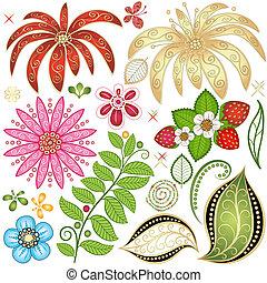kwiatowy zamiar, elementy, komplet, barwny