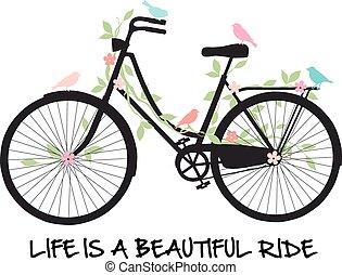 kwiaty, rower, ptaszki
