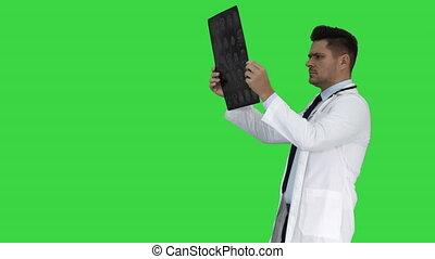 labcoat, skandować, pieszy, radiographic, personel, wizerunek, chroma, ekran, patrząc, znowu, zielony, key., healthcare, biały, ct, rentgenowski, mri