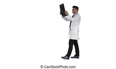 labcoat, skandować, pieszy, radiographic, personel, wizerunek, patrząc, tło., znowu, mri, healthcare, biały, rentgenowski, ct