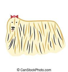 lap-dog, ilustracja, płaski