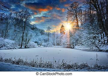 las, na, zachód słońca, jezioro, zima