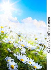 lato, kwiat, sztuka, wiosna, abstrakcyjny, tło, trawa