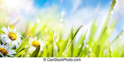 lato, kwiat, sztuka, wiosna, niebo, świeży, słońce, background;, trawa