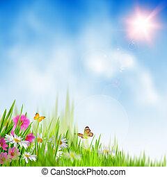 lato, time., tła, abstrakcyjny, środowiskowy