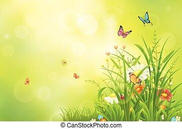 lato, zielone tło