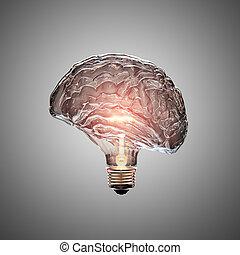 lekka bulwa, mózg