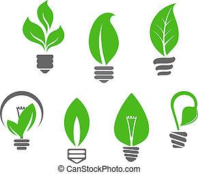 lekki, liście, zielony, bulwy