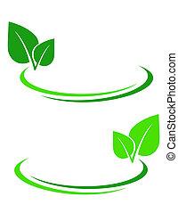 liść, zielone tło