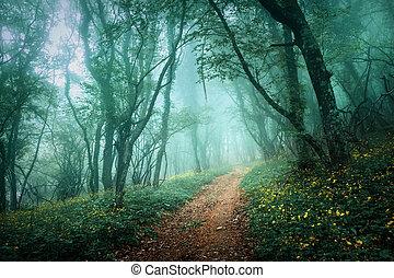 liście, ciemny, mgła, przez, las, tajemniczy, zielony, droga