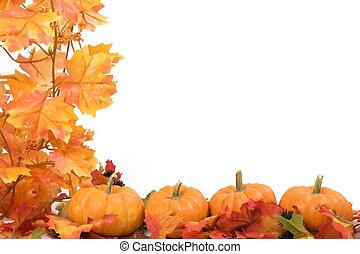 liście, dynie, upadek