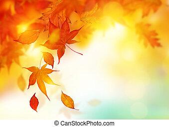liście, jesień, spadanie