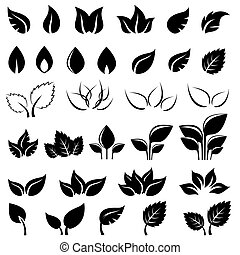 liście, komplet, czarnoskóry, odizolowany